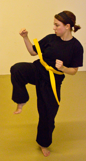 Seattle White Tiger Kung Fu class schedule
